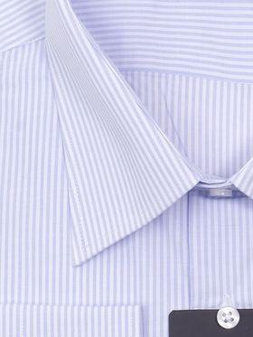 Стильная мужская рубашка прямого покроя больших размеров в белую и голубую полоску